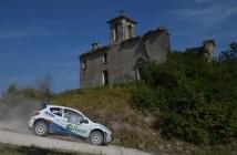 Simone Campedelli, Danilo Fappani (Peugeot 207 S2000 #11, Accademy A.s.d.)
