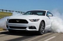Mustang (Custom) (2)