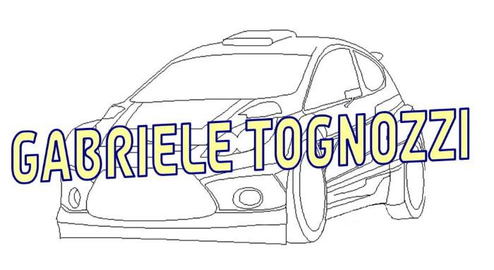 PROGETTO LOGO TOGNOZZI 2015 (Custom)