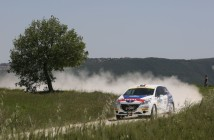 Giuseppe Testa, Daniele Mangiarotti (Peugeot 208 VTI R R2B #43)