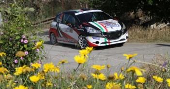 Giorgio Bernardi, Andrea Casalini (Peugeot 208 VTI R R2B #43, Meteco Corse)