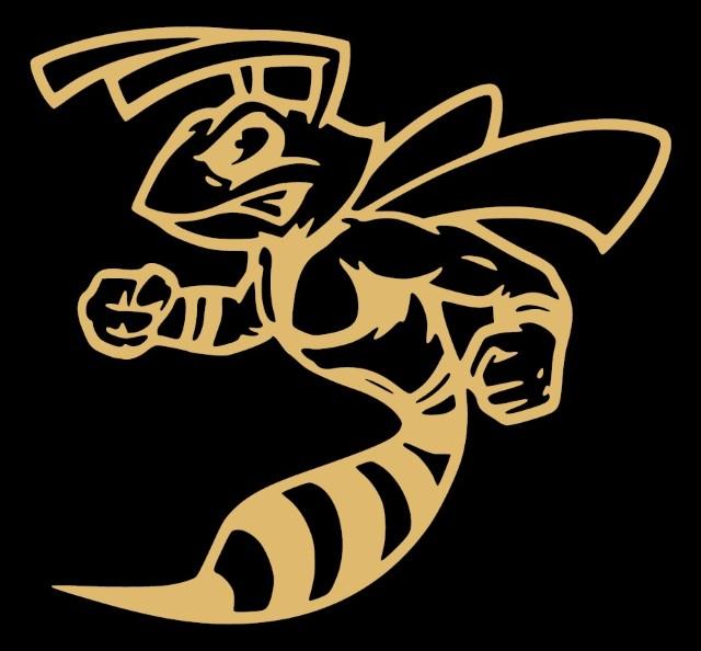 hornet-foto (Custom)