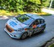 Rally d'Estate_2017_Castagna_Farinella_DSC_4187 (Custom)