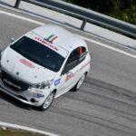 Andrea Carella, Enrico Bracchi (Peugeot 208 R2 #46, Road Runner Team)